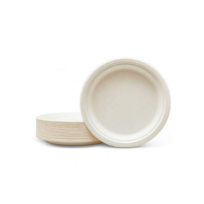 Biodegradable Bagasse Pulp Plate Eco Friendly Disposable Plates